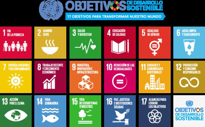 ¿Cómo integrar los 17 Objetivos de Desarrollo Sostenible en el plan de trabajo de mi organización?